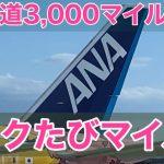 ANA:片道3,000マイル〜、週替わりのトクたびマイル