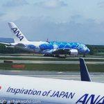 【締切間近】ANA FLYING HONU (A380) 遊覧飛行の第2回目催行募集中!