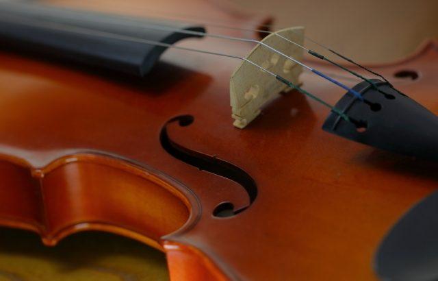 [バイオリン] 初心者の悩みと解決法