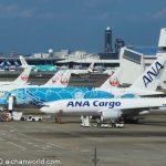 「ANA FLYING HONU」チャーターフライト11月15日実施、今度は3時間!