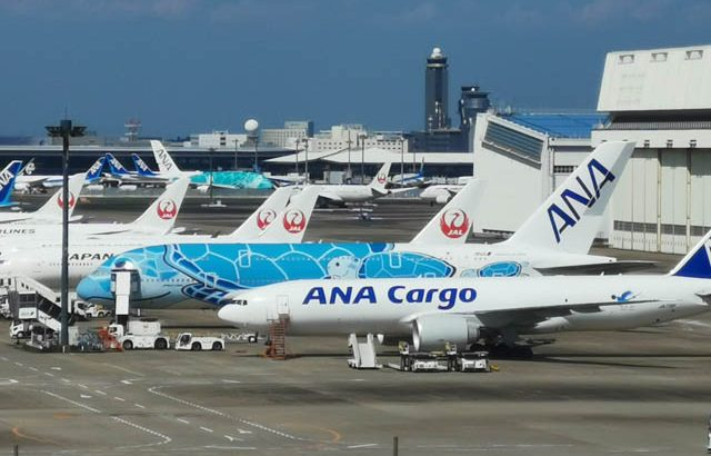 「ANA FLYING HONU」チャーターフライト11月15日実施、今度は3時間!