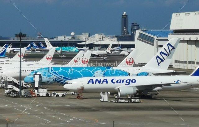 JAL・ANA 新型コロナ特別対応でのマイルやステイタス等の期限延長について確認しよう